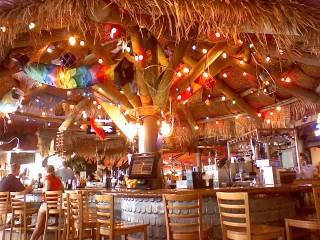 Bar at Cheeseburger in Paradise (Anne Helmenstine