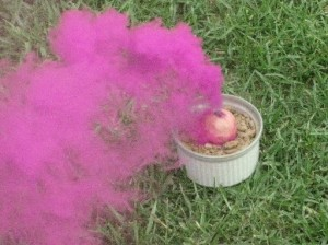 Pink smoke from a small smoke ball.