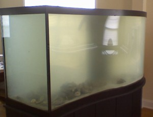Murky Aquarium