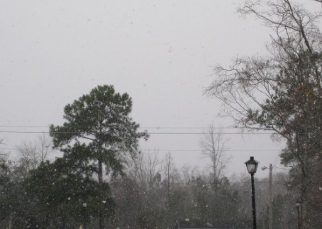 Snow in Murrells Inlet, SC February 2009