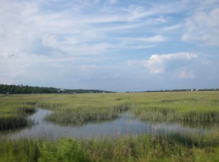Pawleys Island Salt Marsh