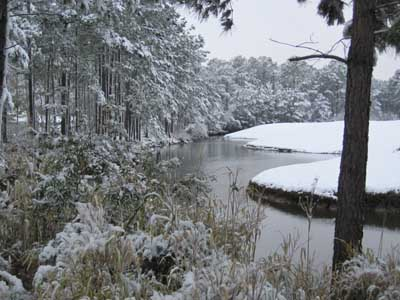 Snow and Indigo Creek